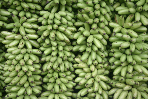 Thais Go Bananas for Bananas